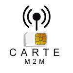 CARTE SIM M2M 2G/3G/4G STANDARD ET  MINI POUR CENTRALE D'ALARME